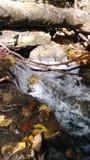 De Dalingen van de herfst Het lange beeld van de Blootstelling van de Waterval van Afon Cwm Llan, door de Watkins Weg, Snowdon, W Stock Foto