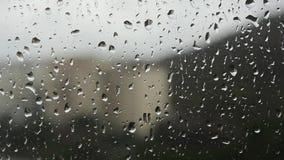 De dalingen van het regenwater op het venster stock footage
