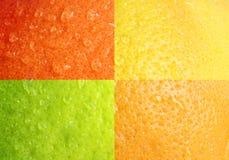 De dalingen van het water op grapefruitschil Stock Afbeeldingen