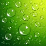 De dalingen van het water op groen Stock Foto