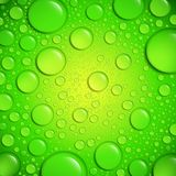 De dalingen van het water op groene oppervlakte Stock Afbeeldingen