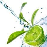 De dalingen van het water op kalk met groene bladeren Royalty-vrije Stock Foto's