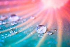 De dalingen van het water op lotusbloemblad Royalty-vrije Stock Afbeeldingen