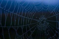 De dalingen van het Web Stock Foto's