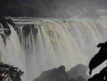 De Dalingen van Iguaçu Stock Foto's