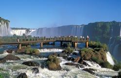 De Dalingen van Iguacu Stock Foto