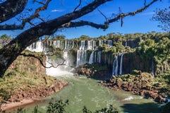 De Dalingen van Iguazu Royalty-vrije Stock Foto's