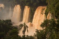 De dalingen van Iguazu van Argentinië royalty-vrije stock foto