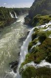 De Dalingen van Iguazu - Brazilië Stock Fotografie