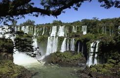 De Dalingen van Iguazu - de Grens van Argentinië/van Brazilië Royalty-vrije Stock Foto's