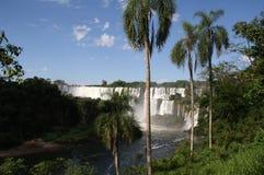 De Dalingen van Iguazu van Argentinië Royalty-vrije Stock Afbeelding