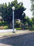 De dalingen van de regen stock fotografie