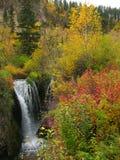 De Dalingen van Roughlock - Zwarte Heuvels van Zuid-Dakota Stock Fotografie