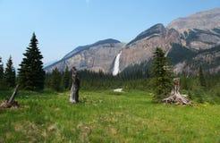 De Dalingen van Takakkaw van Canada Royalty-vrije Stock Foto's