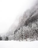 De Dalingen van Truemmelbach - de Winter Stock Foto