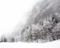 De Dalingen van Truemmelbach - de Winter Stock Fotografie