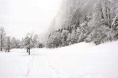 De Dalingen van Truemmelbach - de Winter Stock Foto's