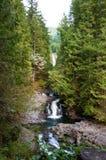 De Dalingen van Wallace, watervallen Stock Afbeeldingen