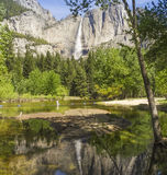 De Dalingen van Yosemite stock fotografie