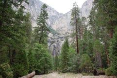 De Dalingen van Yosemite Stock Foto