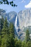 De Dalingen van Yosemite stock afbeelding