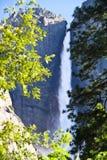 De dalingen van Yosemite, Siërra Nevada, Californië, de V.S. Royalty-vrije Stock Fotografie