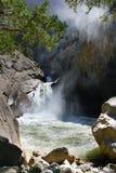 De Dalingen van Yosemite Yosemite Nationaal Park Stock Afbeeldingen