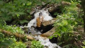 De dalings dichte omhooggaand van het Slomotionwater stock videobeelden