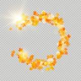 De dalingsesdoorn verlaat kader met gevoelige zon voor decoratie De herfst verlaat grensmalplaatje Het element van het ontwerp Ep vector illustratie