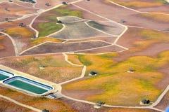 De Dalingswijngaarden van Pasorobles van een vliegtuig worden bekeken - verbazende de herfstkleuren die royalty-vrije stock foto