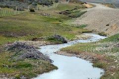 De dam, door beverstakken wordt opgericht van de struiken, in het treeless deel van Tierra del Fuego die stock afbeelding