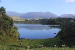 De Dam van Canilidaiyo Royalty-vrije Stock Foto's