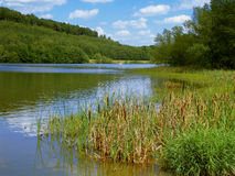 De dam van Kinzig Royalty-vrije Stock Afbeelding