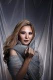 De dame op Sterachtergrond met drapeert grijs zilver schittert stof Ha royalty-vrije stock afbeelding