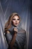 De dame op Sterachtergrond met drapeert grijs zilver schittert stof Ha stock foto's