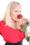 De dame in rood met rood nam toe Royalty-vrije Stock Afbeelding