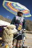 De Dame van de lama Royalty-vrije Stock Afbeelding