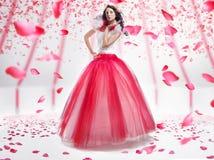 De dame van de schoonheid Stock Foto