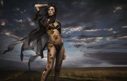 De dame van de schoonheid in het de herfstlandschap Royalty-vrije Stock Afbeeldingen