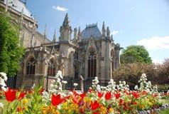 De dame van Notre - Parijs Stock Afbeelding