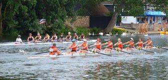 De dames coxed eights het roeien in de concurrentie op de rivier ouse bij St Neots Royalty-vrije Stock Foto's
