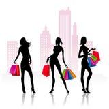 De dames gaan winkelend stock illustratie