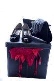 De damesslipjeshandschoenen en beurs 3 van vrouwenschoenen stock afbeelding