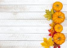 De dankzeggingsachtergrond van de de herfstpompoen stock fotografie