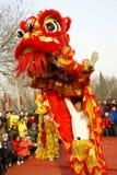 De dans van de leeuw Royalty-vrije Stock Fotografie