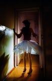De dans van de nacht Royalty-vrije Stock Afbeelding