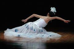 De dans van de pauw Royalty-vrije Stock Foto's