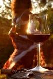 De dans van de wijn Stock Afbeelding