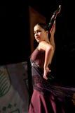 De Dans van het flamenco Stock Afbeeldingen