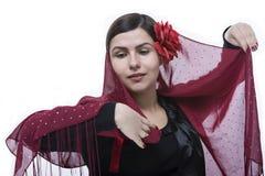 De dans van het flamenco Stock Foto